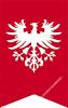 Kwaśniewski Józef - powstaniec wielkopolski spod Leszna i Szubina
