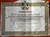 Patent Odznaki Pamiątkowej Wojsk Wielkopolskich
