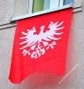99. rocznica Powstania Wielkopolskiego w Brzozie